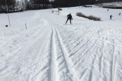 FEBRUARY/SNOW